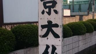 EL GRAN BUDA de Tokyo