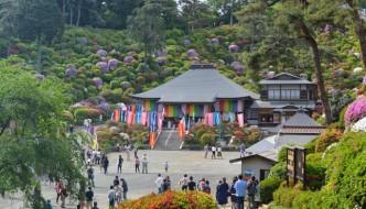 Azalea Matsuri en el templo Shiofune Kannon