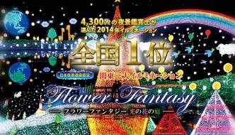 ASHIKAGA FLOWER PARK (la mayor iluminación navideña del planeta)